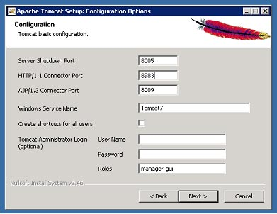 apache-tomcat-setup-configuration-options