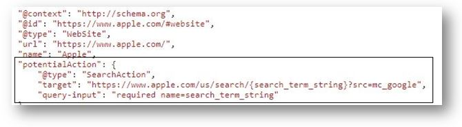 Schema Markup for ecommerce website - Search Box in Google Search Engine Result Pages 1